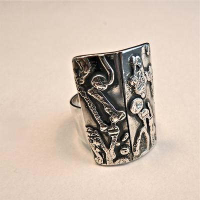 Goudsmid Edelsmid Ylva Roël. Design sieraden, ontwerp laten maken Haarlem. 'tweeluik'. zilver Zilveren ring. R149